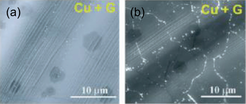 Figure 5. SEM images of graphene coated Cu (a) before and (b) after exposure to air at 200oC for 4 h (Ref. 28) (showing oxide formed at graphene domain boundaries).