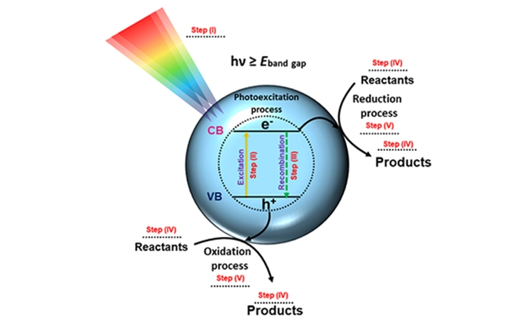 Reading at exposed surfaces: theoretical insights into photocatalytic activity of ZnWO4