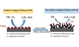 Unexpectedly Promoting Effect of Carbon Nanotubes Grown During the Non-oxidative Coupling of Methane over Copper Catalysts