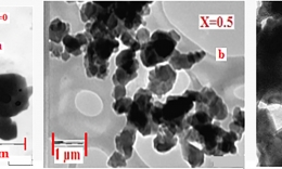 Magnetic and Resonance Study of Double doped M-type hexaferrite Ba1-x(CuxAlxFe12-x)O19